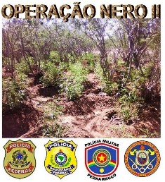 Operação Nero 2