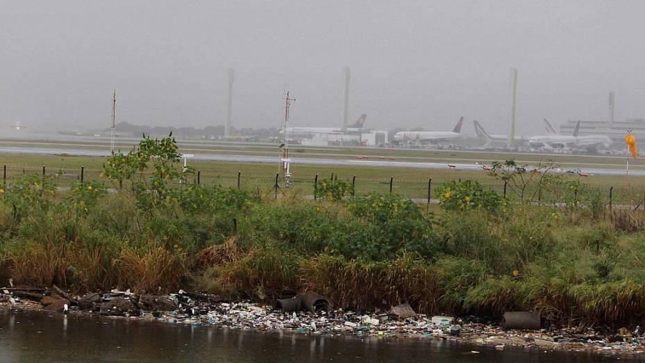 Lixo no entorno do aeroporto do Galeão atrai urubus, que voam próximo aos aviões (Marcelo Martins/VEJA)