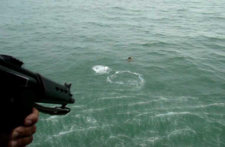 Fuga a nado em Santa Catarina