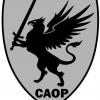 CAOP - DPF