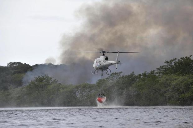 Incêndio atinge mata no região do Canal do Linguado em Araquari