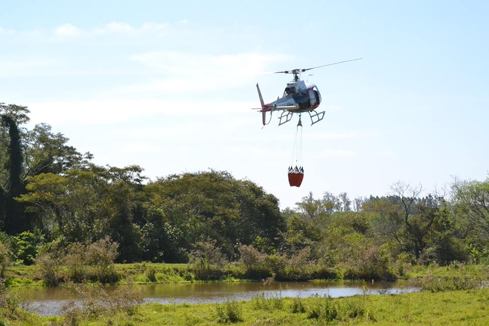 Helicóptero Águia, em apoio ao Corpo de Bombeiros de Presidente Prudente, auxilia no combate a incêndio ocorrido no Bairro Vale das Parreiras, região norte da cidade. A equipe realizou 15 lançamentos de água, através do equipamento Bambi-bucket, totalizando 8.175 litros, capitados em açude no Bairro Vila Furquim (proximidades do SESI).