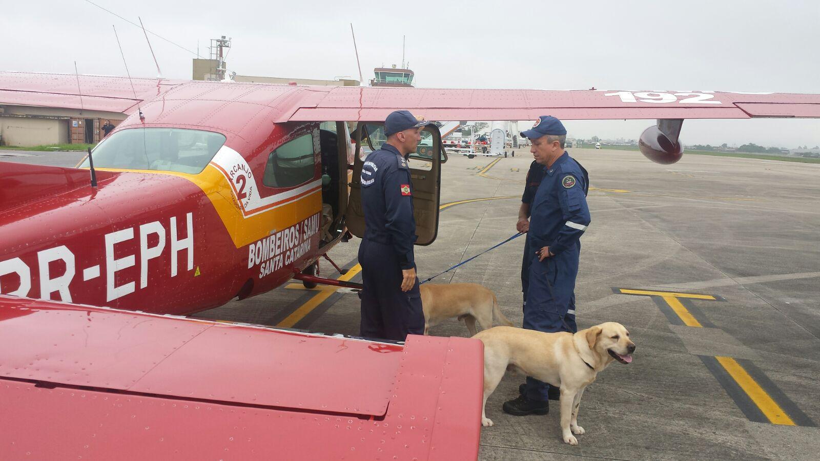 BOA/SC: Cães de resgate de SC são enviados para buscas em Mariana (MG)