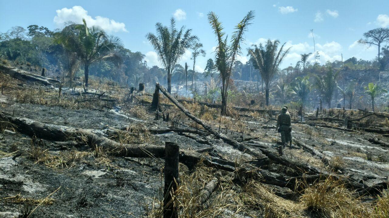 Governo intensifica fiscalização de desmatamento e queimadas em Tarauacá/AC