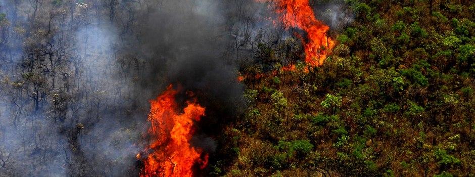governador-libera-recursos-para-combate-a-incendios-em-minas-gerais