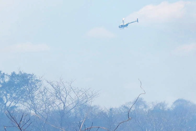 Força tarefa enfrenta incêndios florestais no Piauí
