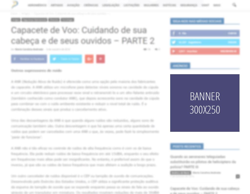 paginas-internas-300-250