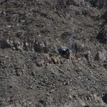 Helicóptero da Polícia Estadual de Baja California cai em não há sobreviventes
