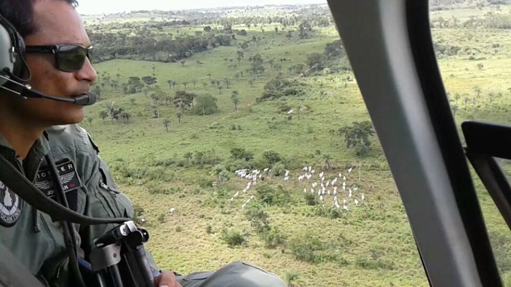 Delegacia de Polícia Civil de Miranorte recebe apoio do CIOPAER em ação de combate ao furto de gado