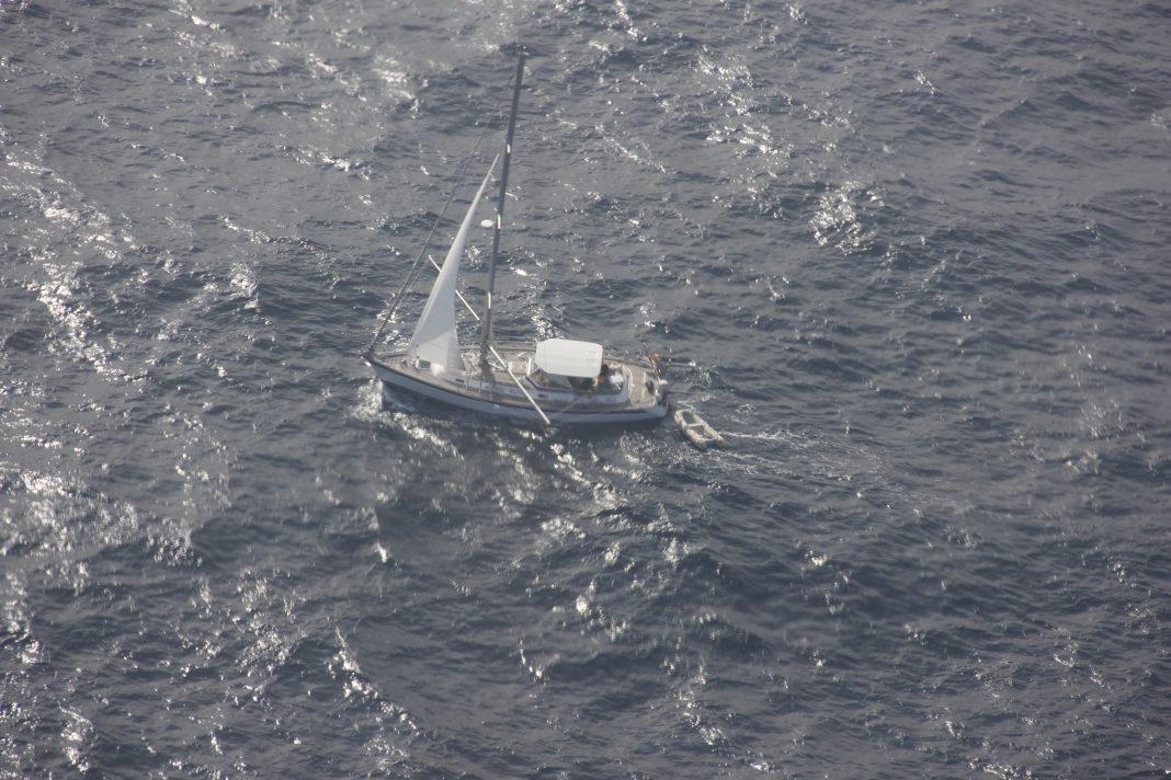 Tripulantes de veleiro resgatados após choque com baleia - Missão a 659 quilómetros a nordeste da Ilha