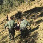 Socorristas carregaram homem por cerca de 500 metros por mata até área onde helicóptero pousou (Foto: PM/Divulgação)