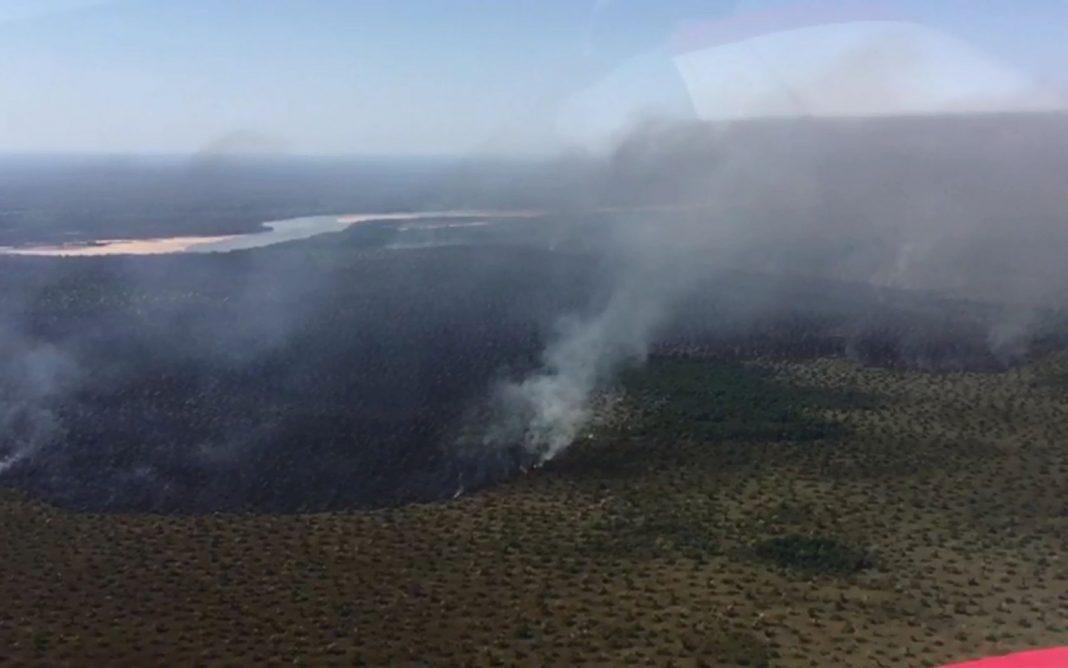 Incêndio atinge o Parque Estadual do Araguaia, em Novo Santo Antônio (MT) (Foto: Corpo de Bombeiros de Mato Grosso)
