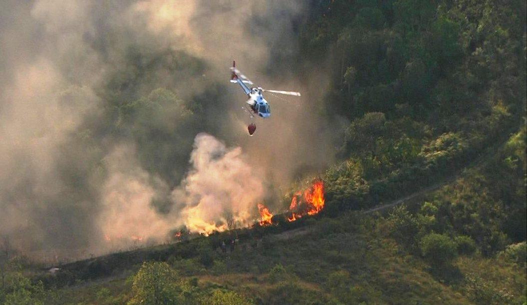 Helicóptero voa até área de mata em Franco da Rocha (Foto: Reprodução/TV Globo)