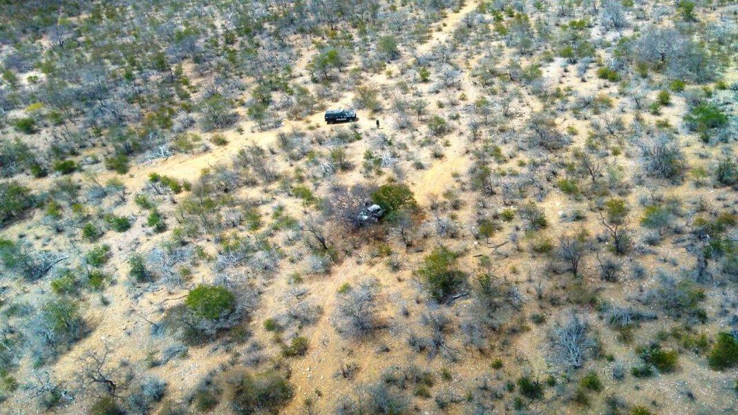 Falcão 03 localiza veículo roubado durante operação de erradicação de maconha