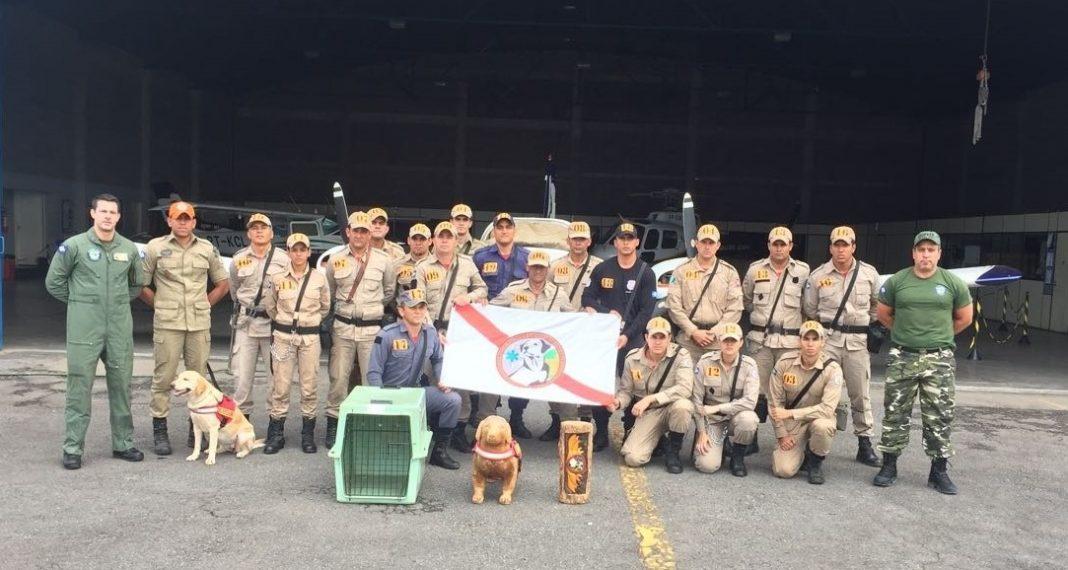 Policiais participam de instrução com embarque e desembarque de cães em aeronave.