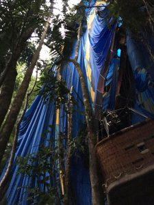 Balão ficou preso entre as árvores na mata (Foto: Simone Silva de Miranda/ Arquivo Pessoal)