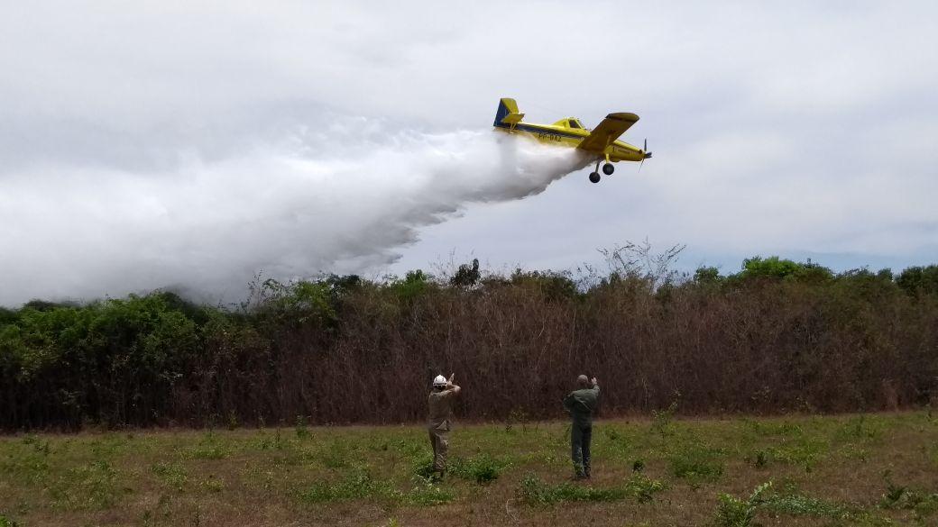 Atuação dos bombeiros contra os focos de incêndio (Corpo de Bombeiros)