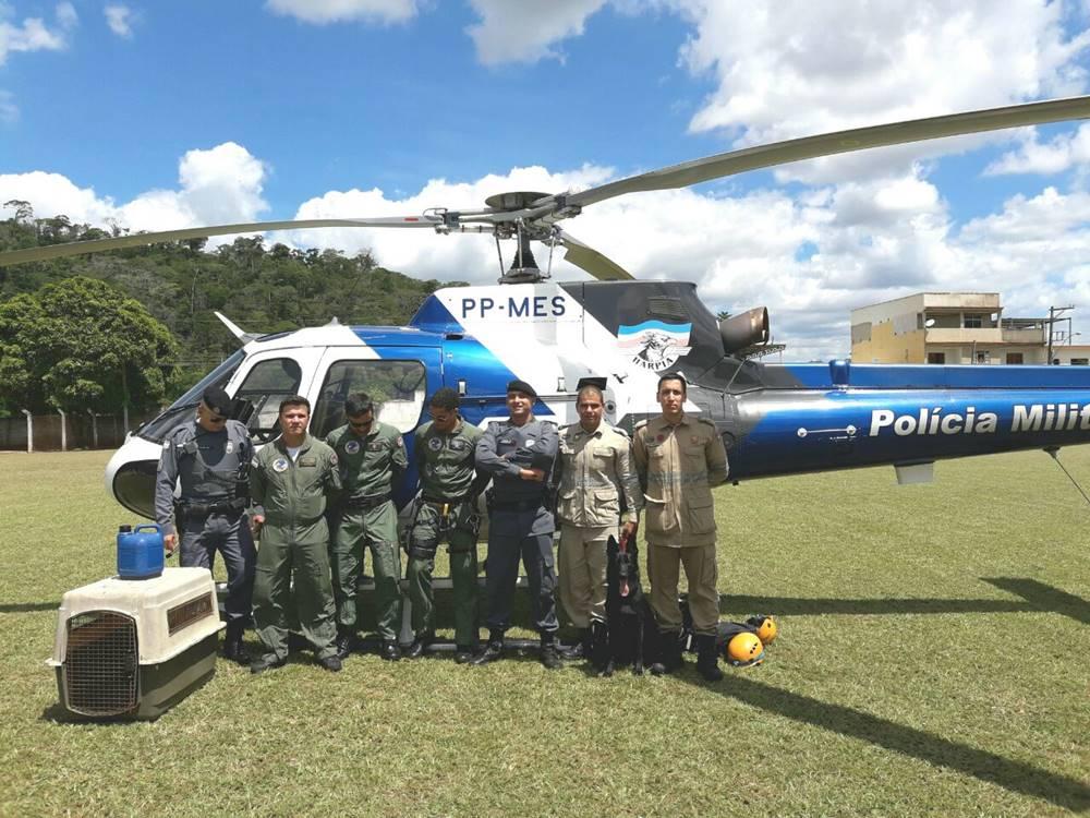 Helicoptero_e_corpo_de_bombeiros_procuram_idosa_desaparecida_em_Afonso_Claudio