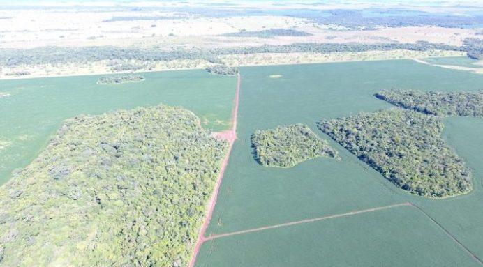 Polícia Militar Ambiental com uso de drone autua fazendeiros por desmatamento ilegal no Mato Grosso do Sul