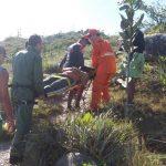 Bombeiros e GTA resgatam vítimas de ataque de abelhas na Serra de Itabaiana. Foto: Ricardo Pinho/Ascom GTA