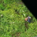 Sargento da PM do DF é encontrado em mata de Taguatinga após tentativa de assalto (Foto: Polícia Militar/Divulgação)