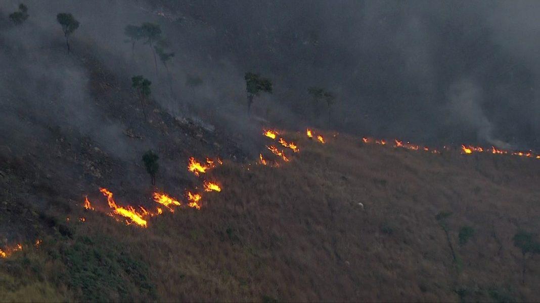 Incêndio atinge região do Pico do Jaraguá (Foto: Reprodução/TV Globo)