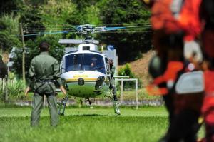Batalhão fez salvamento em ataque de abelhas Bruno Alencastro / Agencia RBS