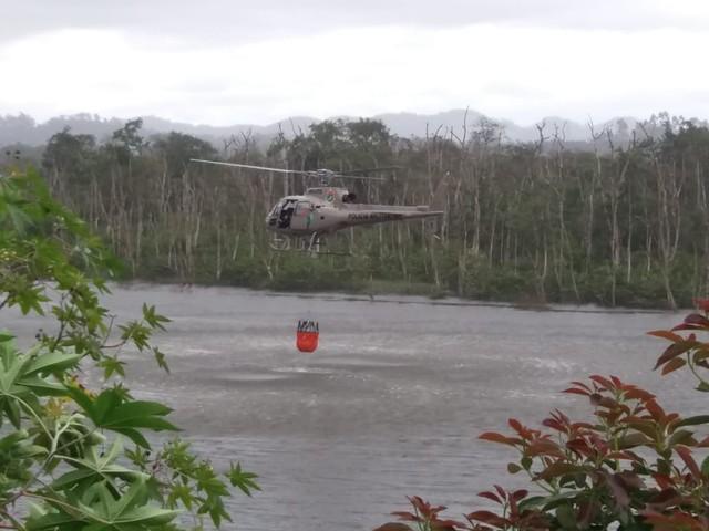 Helicóptero da PM auxiliou no combate ao fogo em Araquari — Foto: Helicóptero Águia da PM/Divulgação