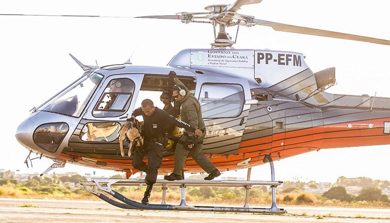 Em uma rotina de mais de 15 horas de treinamento diário, homens, mulheres e os cães de trabalho são levados ao limite.