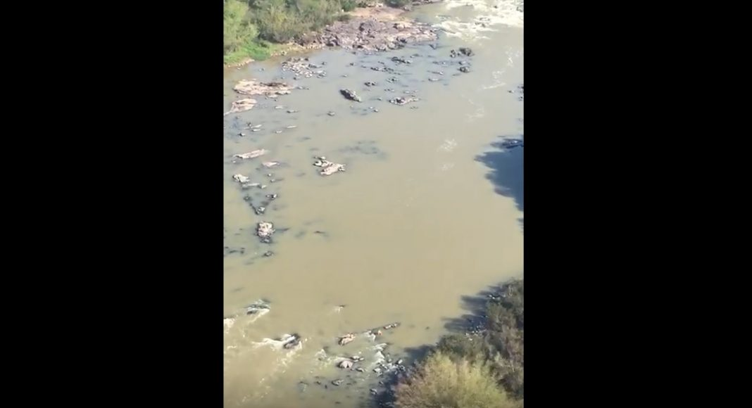 homens-tentam-salvar-vitima-que-caiu-no-rio-e-ficam-ilhados-em-indaial-bombeiro-1068x580